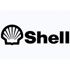 Shell Vinyl Sticker