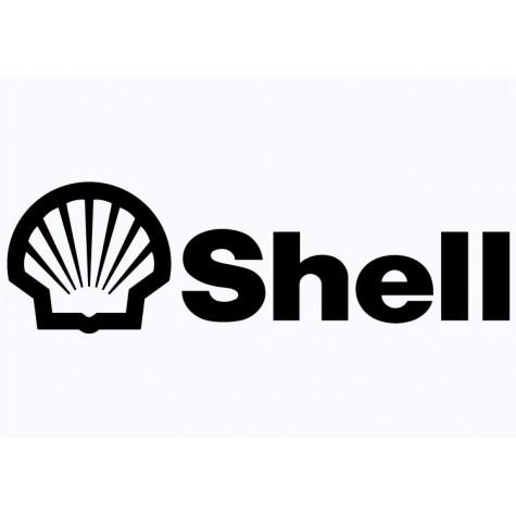 Shell Vinyl Sticker