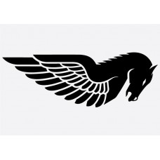 Bike Decal - Buell 3