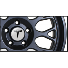 Tesla Badge Vinyl Sticker