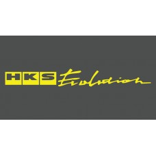 HKS Evolution Sunstrip