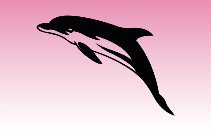 Dolphin 2 Girly Graphic