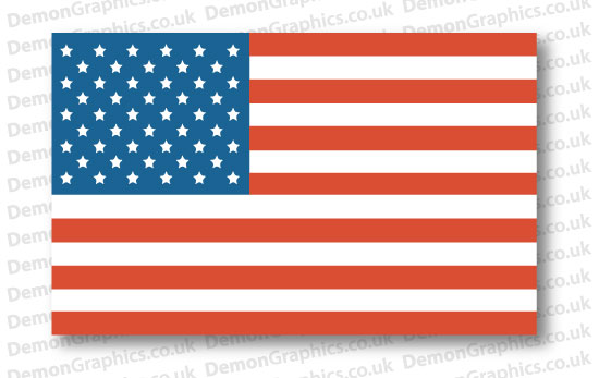 USA Flag (Pair)