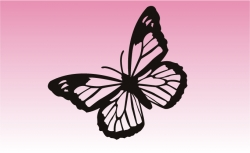 Butterfly 3 Girly Sticker