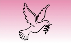 Dove Peace Girly Sticker